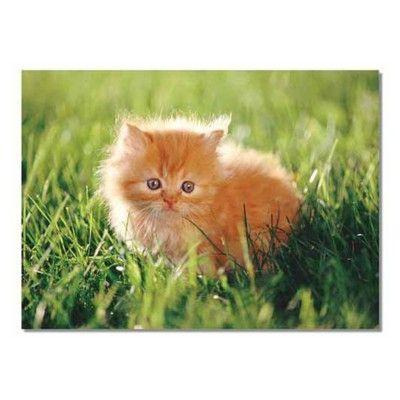 Puslespil - kattekilling, 30 brikker