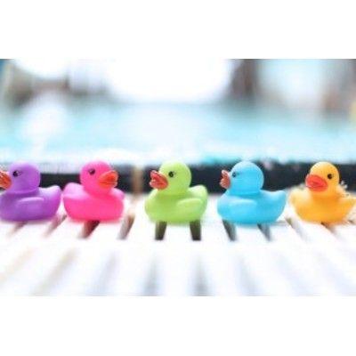 Badeand - fem ænder i flotte farver