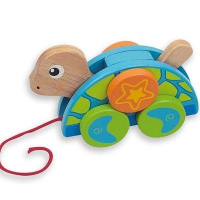 Trækdyr - skildpadde