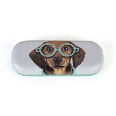 Brilleetui - hund med blå briller - Catseye